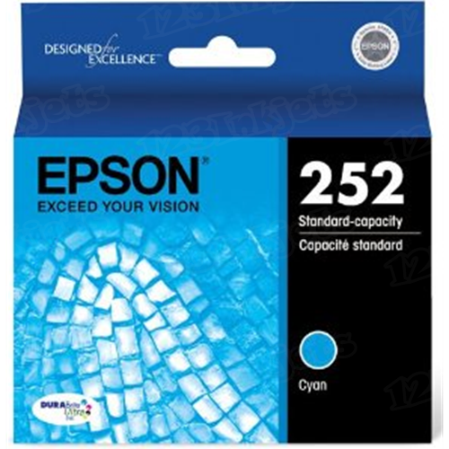 OEM T252220 Cyan Ink for Epson